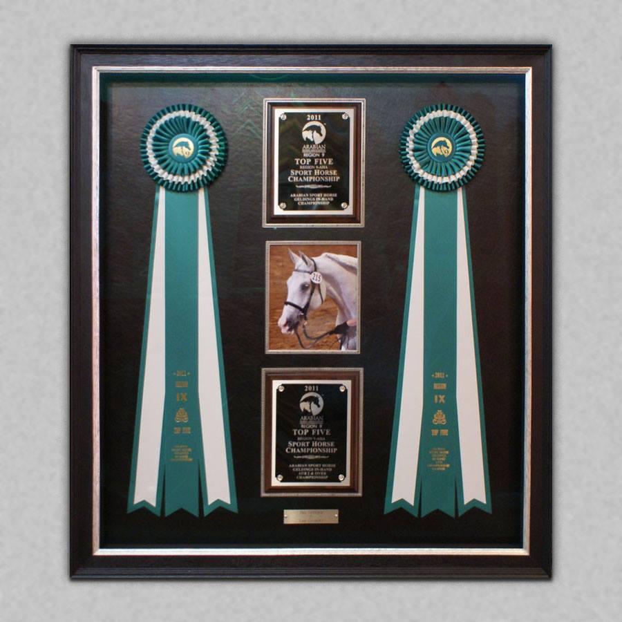 Diploma frames and achievements arthaus custom picture framing diploma achievements frame gallery jeuxipadfo Gallery